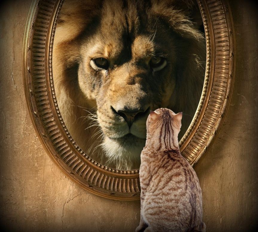 Cambia de espejo por WendyBello