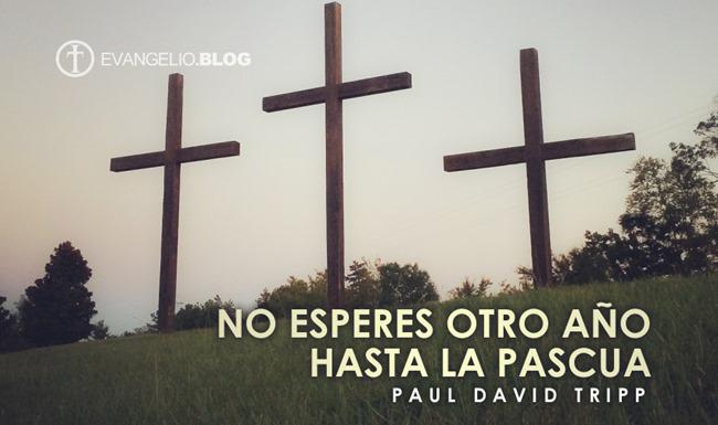 No Esperes Otro Año Hasta La Pascua Por Paul DavidTripp